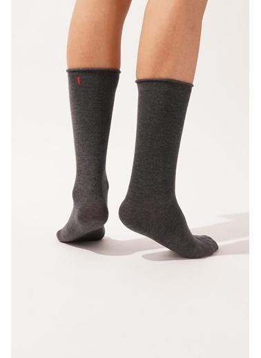 Katia & Bony Harold Bambu Lastiksiz Erkek Soket Çorap  Antrasit